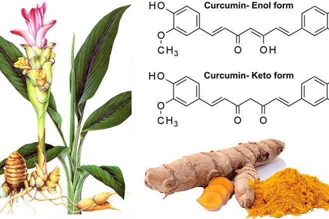 Curcumin là gì? Công dụng chính của Curcumin?
